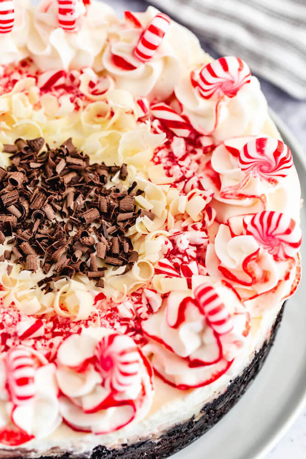 close up view of top of candy cane and chocolate cheesecake