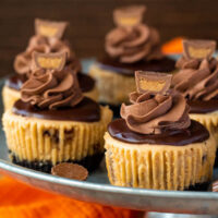 Mini Reese's Peanut Butter Cheesecakes