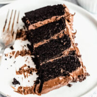 The Best Chocolate Cake with Fudge Frosting