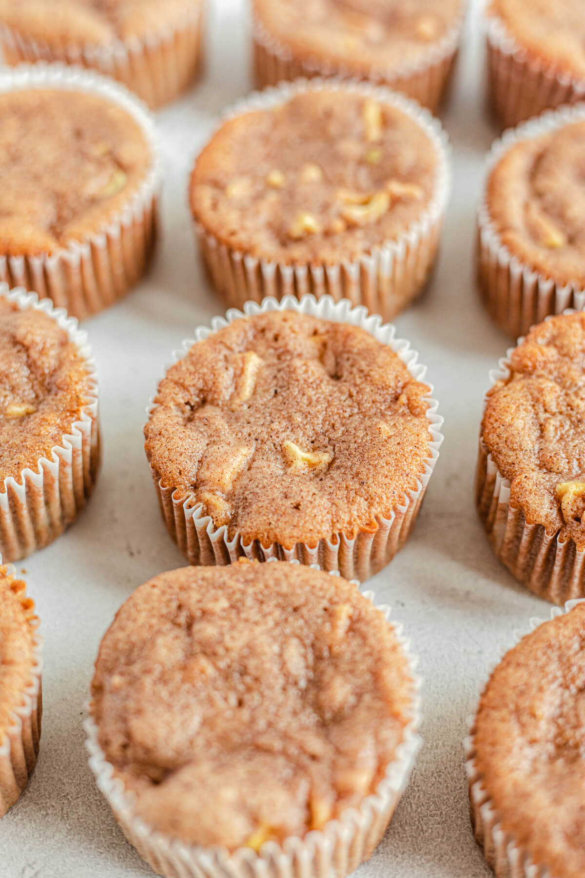 rows of unfrosted apple cupcakes