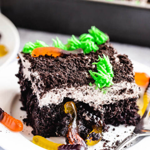 Dirt and Worms Poke Cake