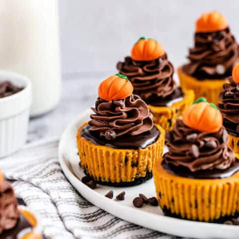Mini Chocolate Chip Pumpkin Cheesecakes