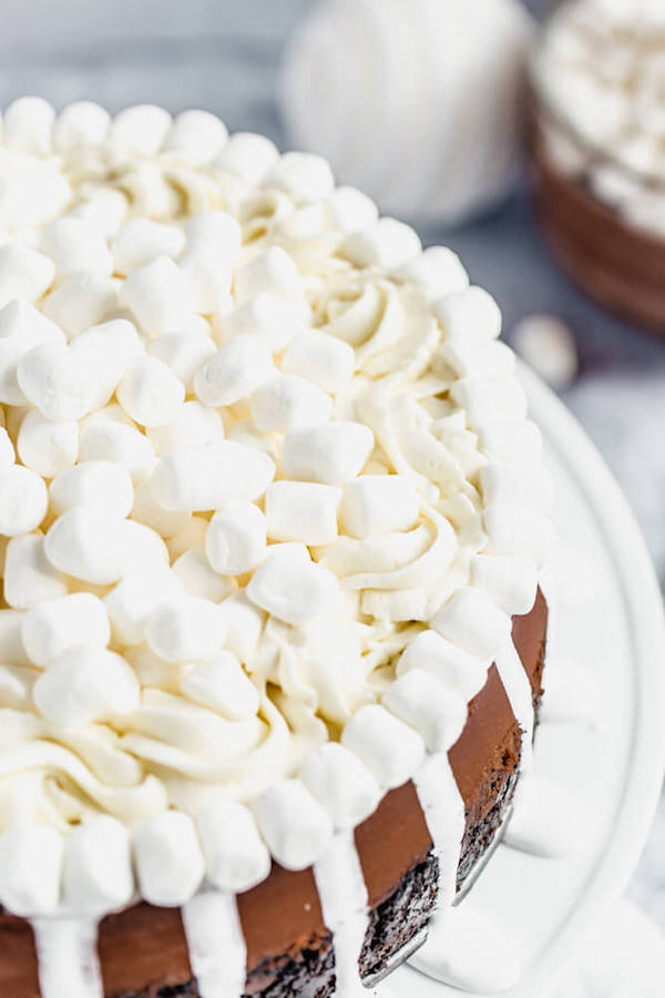 close up of marshmallow topped cheesecake