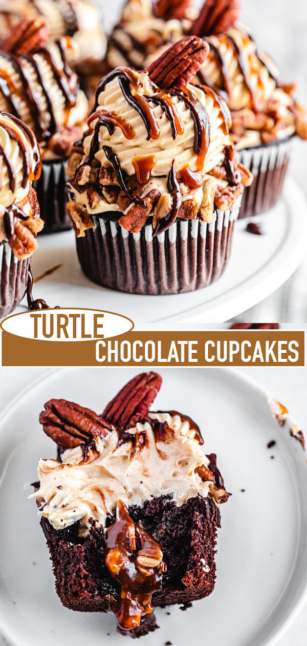 turtle cupcake long pin image