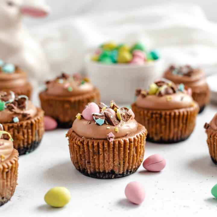 Mini Malted Milk Chocolate Cheesecakes