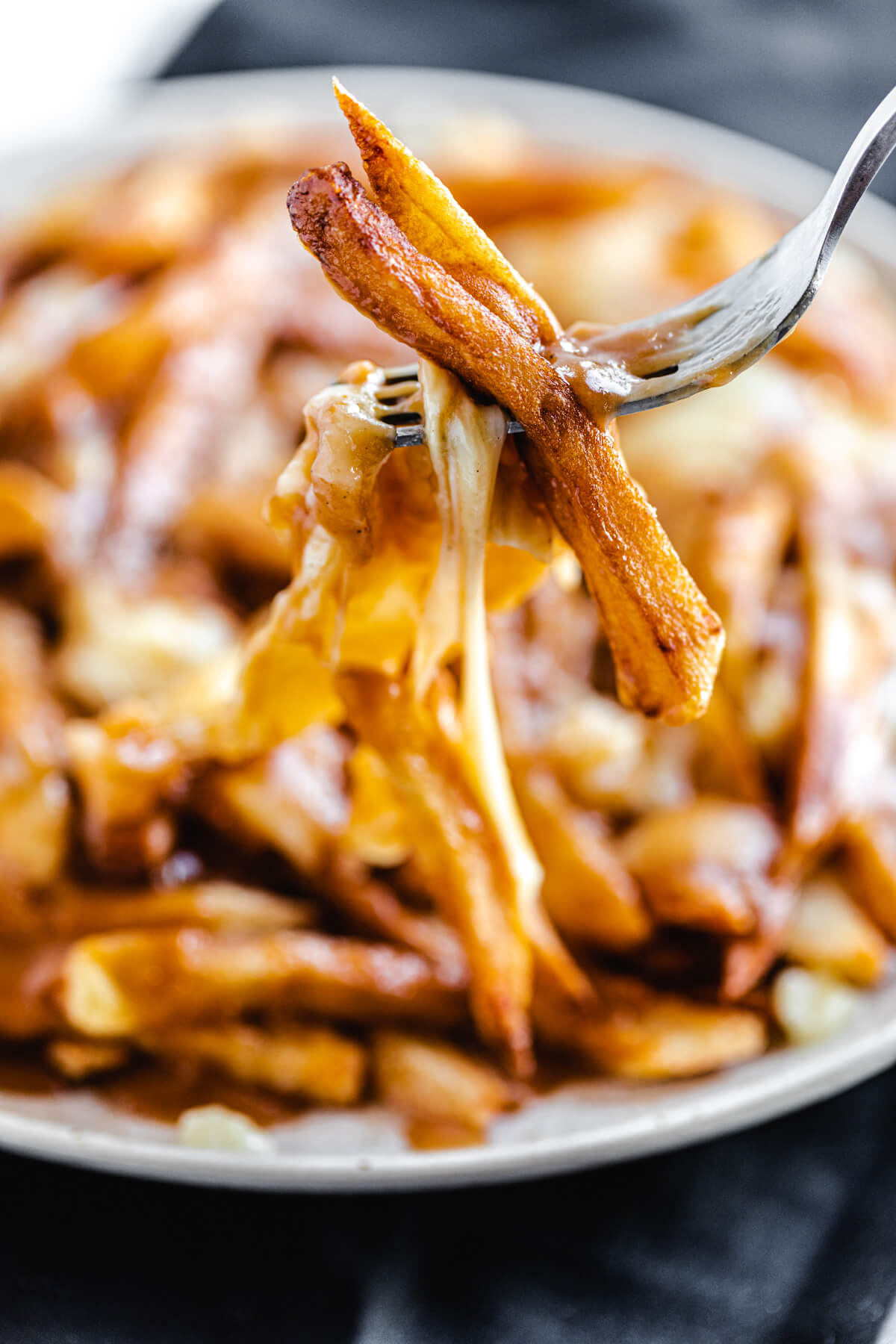 close up of French fries and cheese on a fork