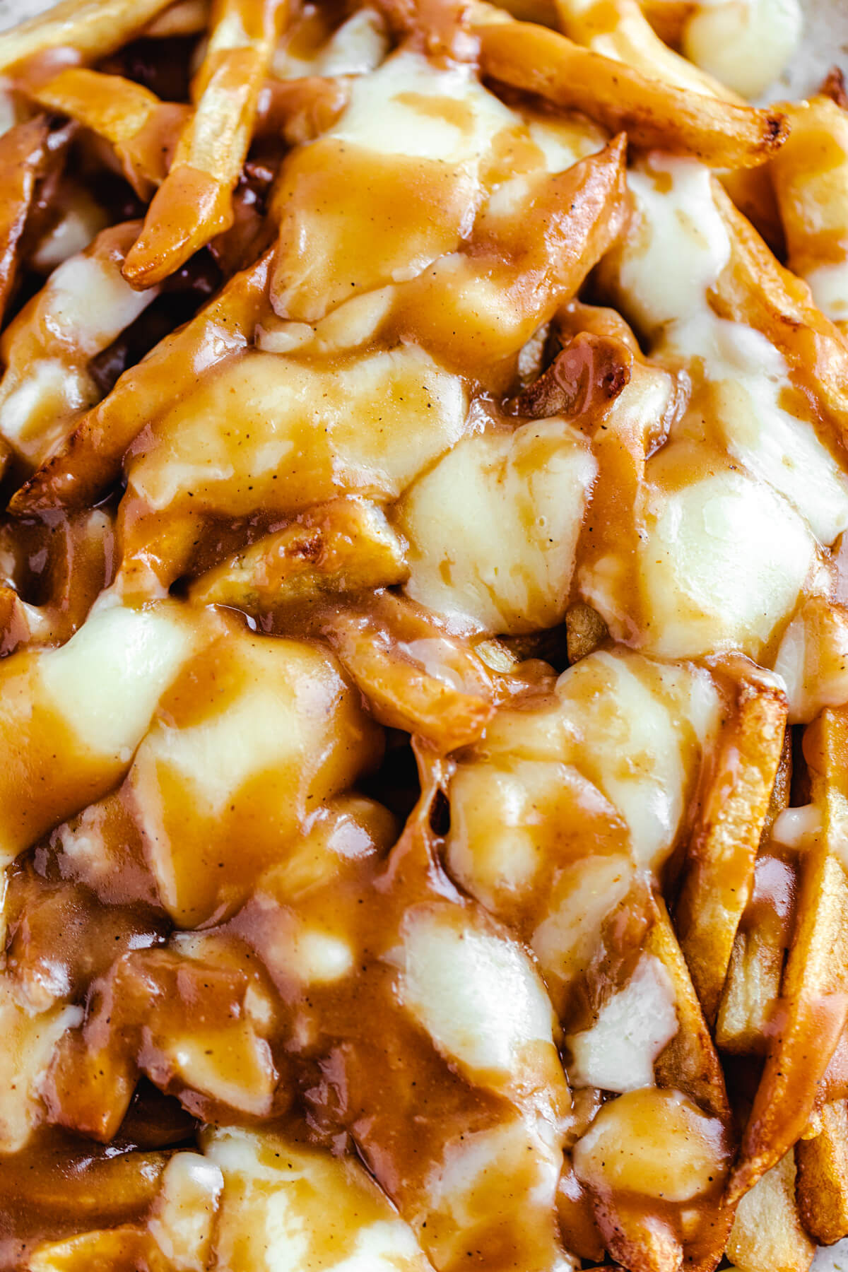 close up view of fries, melted cheese curds and gravy
